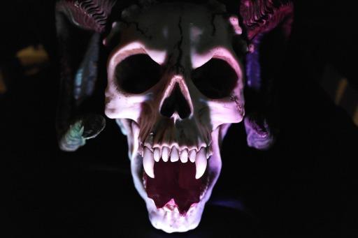 skull-535745_1280